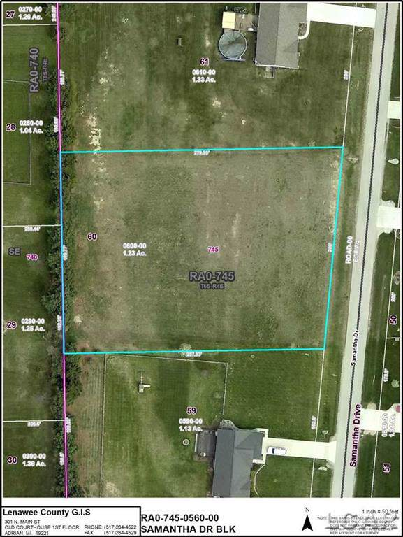 Lot 60 Samantha Dr, Raisin Twp, MI 49229 (#56050004446) :: Real Estate For A CAUSE