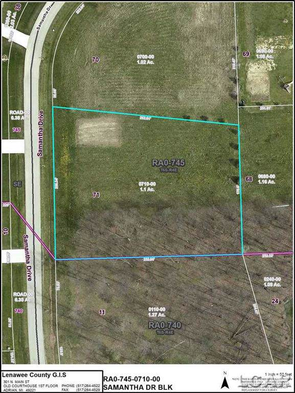 Lot 71 Samantha Dr, Raisin Twp, MI 49229 (#56050004448) :: Real Estate For A CAUSE