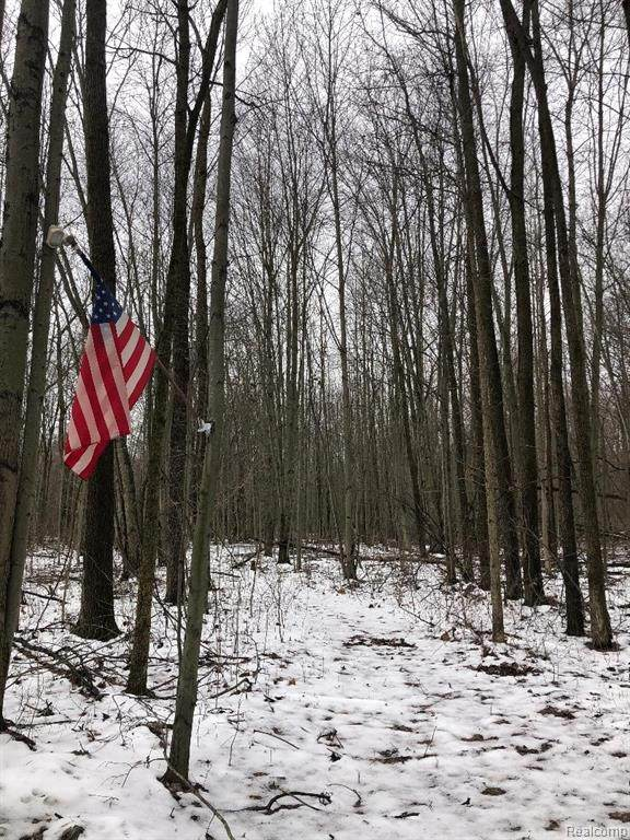 vacant Elwell Road, Sumpter Twp, MI 48111 (#2200010571) :: The Mulvihill Group