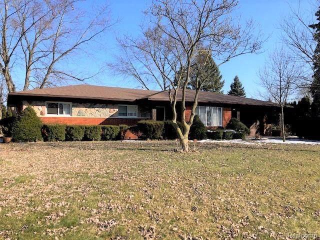 6880 Fredmoor Drive, Troy, MI 48098 (#2200013390) :: The Buckley Jolley Real Estate Team