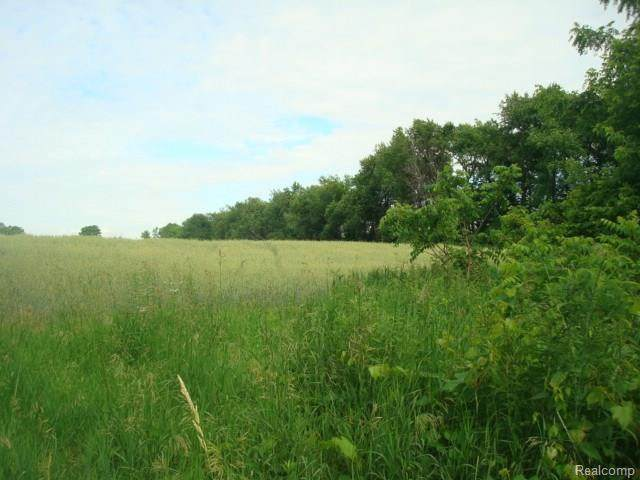 1 Rush Road, Oakland Twp, MI 48363 (#2200015220) :: The Buckley Jolley Real Estate Team