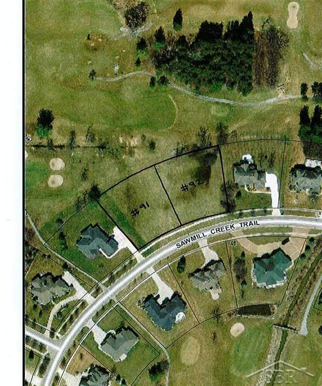 1000 Sawmill Creek Trail #91, Saginaw Twp, MI 48603 (#61050007011) :: Alan Brown Group