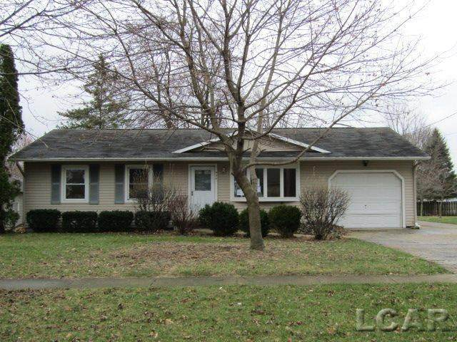 906 Shady Lane, Tecumseh, MI 49286 (#56050009233) :: The Mulvihill Group