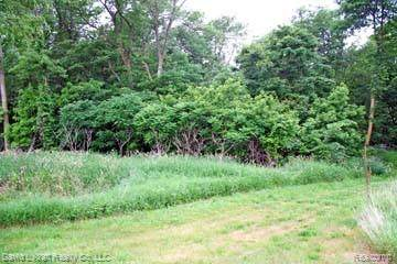 LOT 2 Sand Ridge Drive, Mckinley Twp, MI 48755 (MLS #2200027564) :: The John Wentworth Group