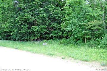 3520 Stagecoach Trail Lot 1, Mckinley Twp, MI 48755 (#2200027568) :: BestMichiganHouses.com