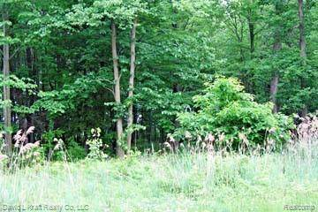 LOT 12 Stagecoach Trail, Mckinley Twp, MI 48755 (MLS #2200027569) :: The John Wentworth Group