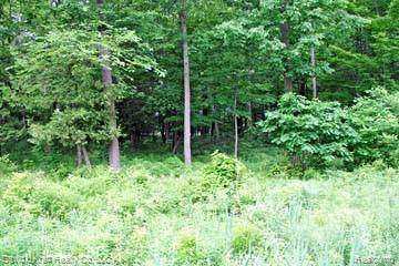 LOT 10 Stagecoach Trail, Mckinley Twp, MI 48755 (MLS #2200027572) :: The John Wentworth Group