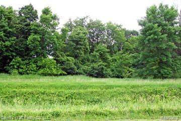 LOT 8 Stagecoach Trail, Mckinley Twp, MI 48755 (MLS #2200027576) :: The John Wentworth Group