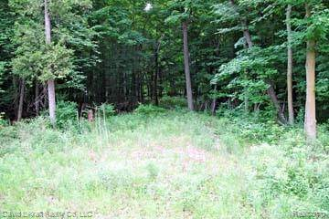 LOT 7 Stagecoach Trail, Mckinley Twp, MI 48755 (MLS #2200027577) :: The John Wentworth Group