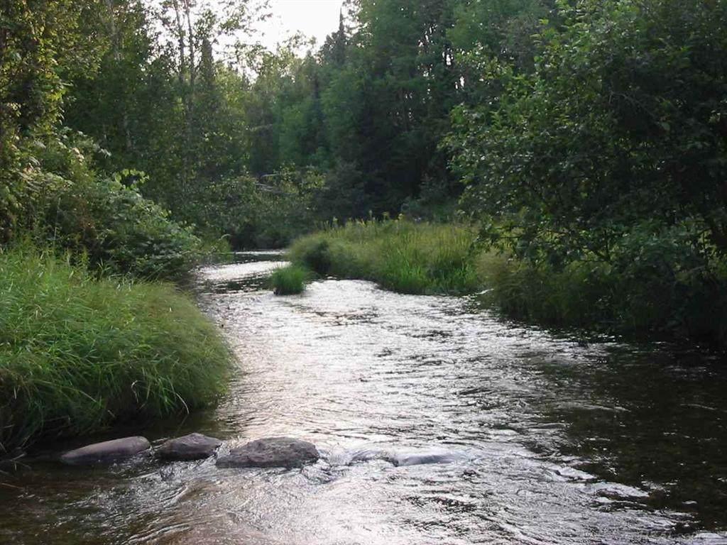 parcel 4 River Rd - Photo 1