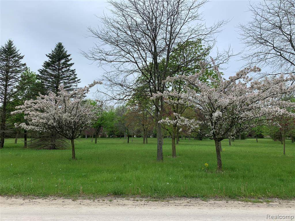 Parcel 1-B Pond Drive - Photo 1