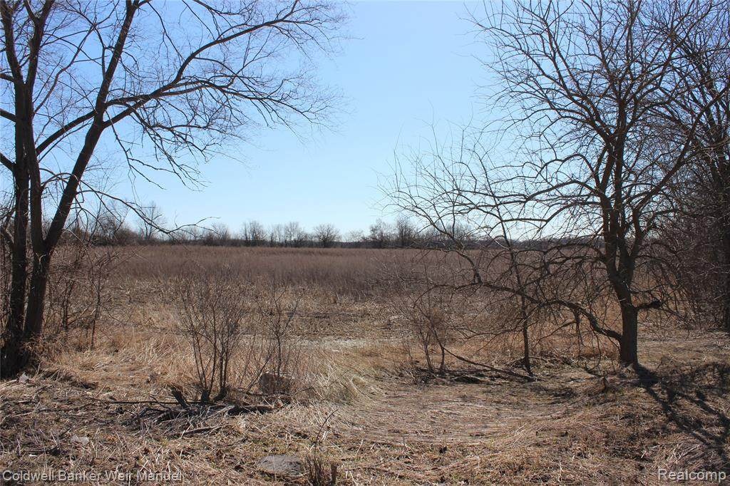 9155 6 MILE RD - Photo 1