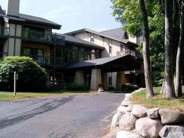5620 Highlands Dr #655, Harbor Springs, MI 49740 (#58050016001) :: Novak & Associates