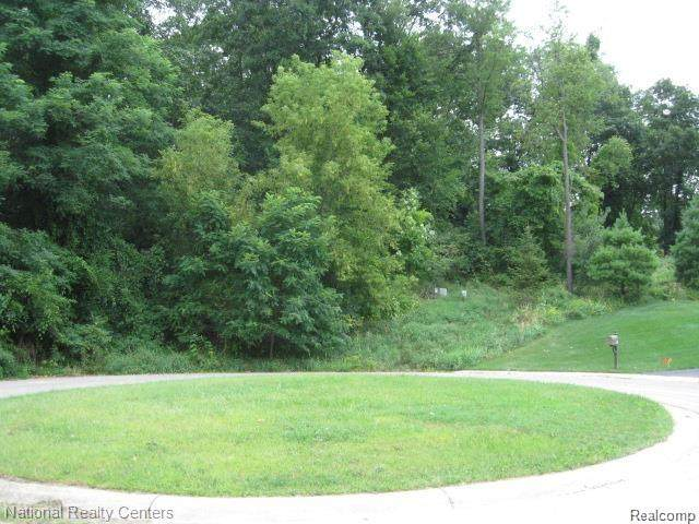0000 Cranberry Hill Road, Independence Twp, MI 48348 (#2200050882) :: The Alex Nugent Team | Real Estate One