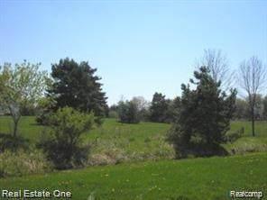 8439 Holcomb Road, Springfield Twp, MI 48348 (#2200054780) :: BestMichiganHouses.com