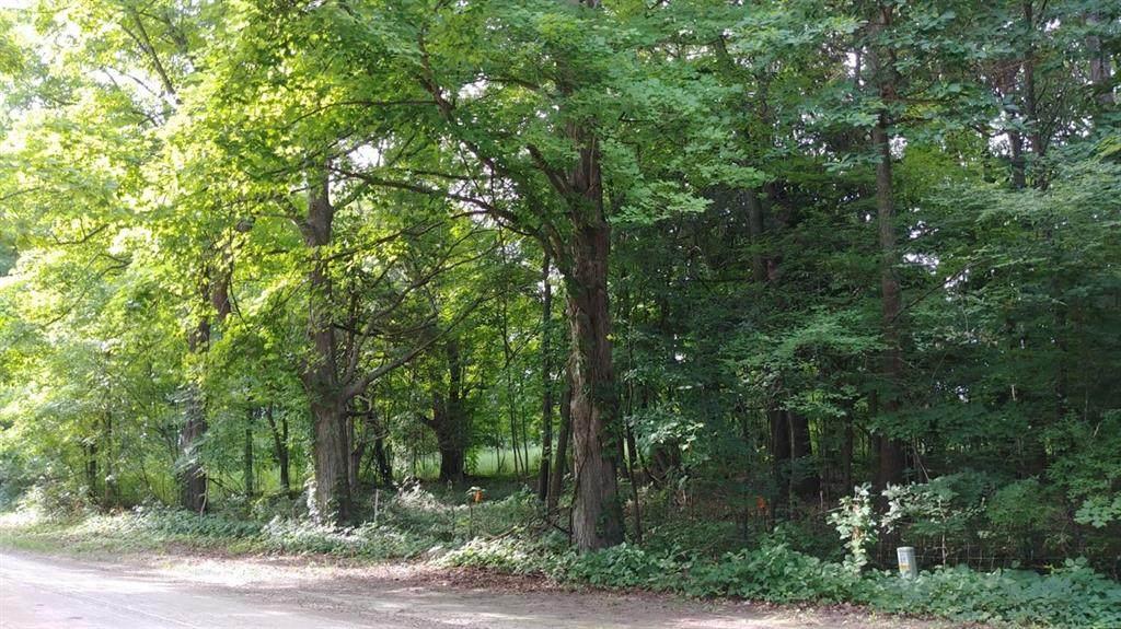 0 Island Lake Road - Photo 1