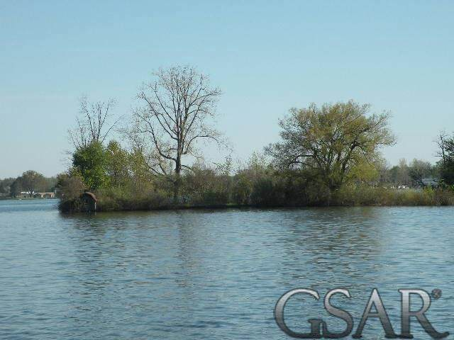 Small Island, Crystal Twp, MI 48818 (#60050020209) :: The Mulvihill Group