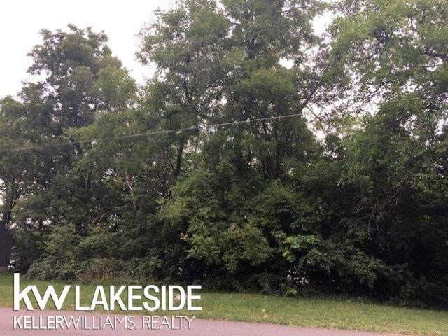 0 S Lake St, Harrison, MI 48625 (#58050022885) :: RE/MAX Nexus