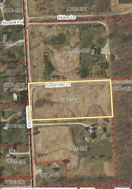 vacant land Vincent Road, Clyde Twp, MI 48049 (#2200075139) :: BestMichiganHouses.com