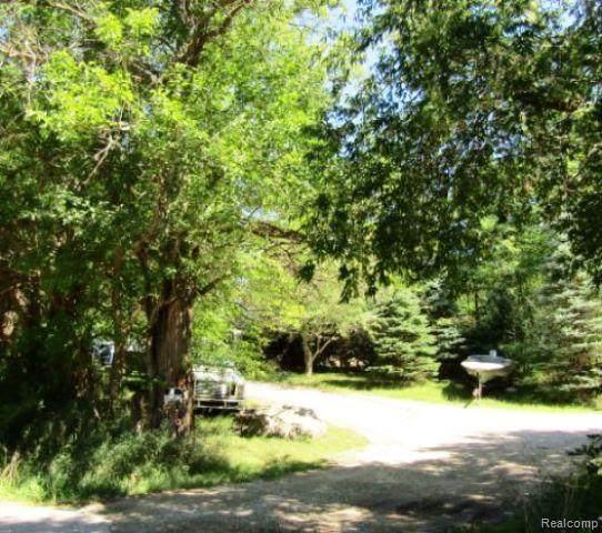 7850 Hickory Ridge Road, Rose Twp, MI 48442 (#2200075554) :: BestMichiganHouses.com