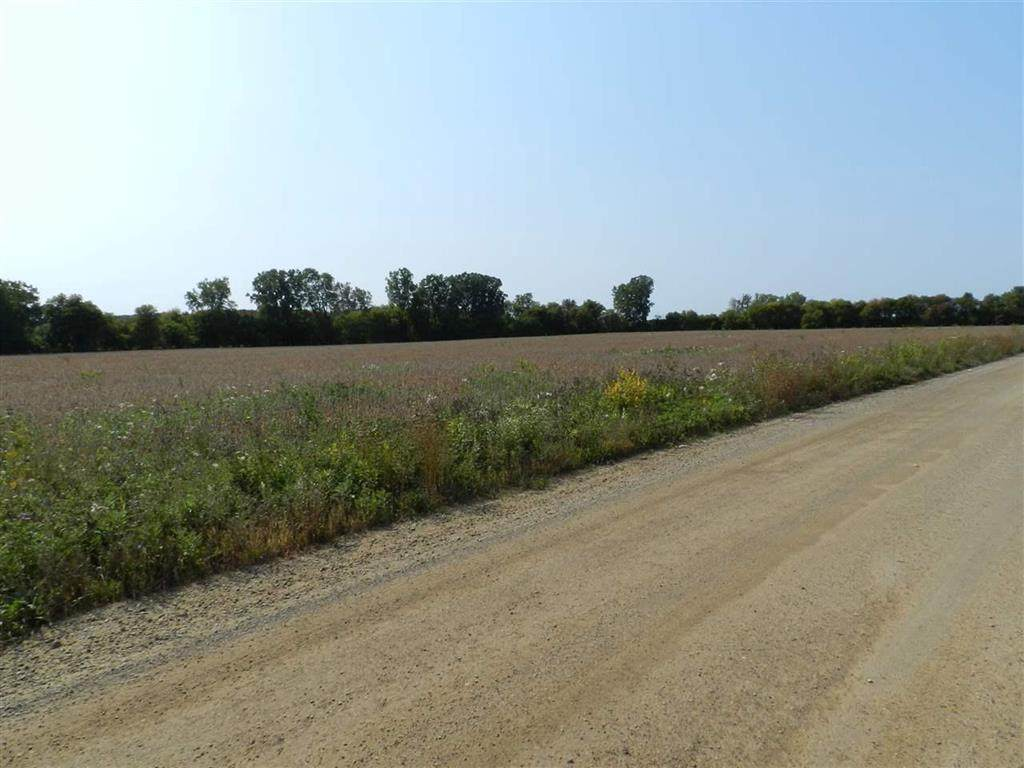 Fowlerville Road - Photo 1