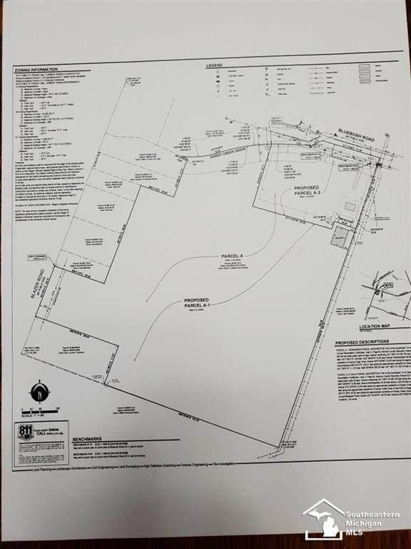 0 Blazer Rd., MAYBEE, MI 48159 (#57050023745) :: Novak & Associates