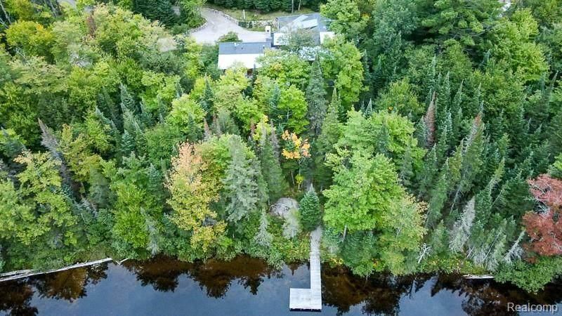 117 Homan Lake Road - Photo 1