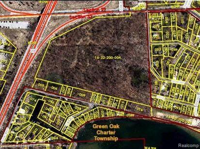 000 Nine Mile Rd, Green Oak Twp, MI 48189 (#2200077687) :: The BK Agency