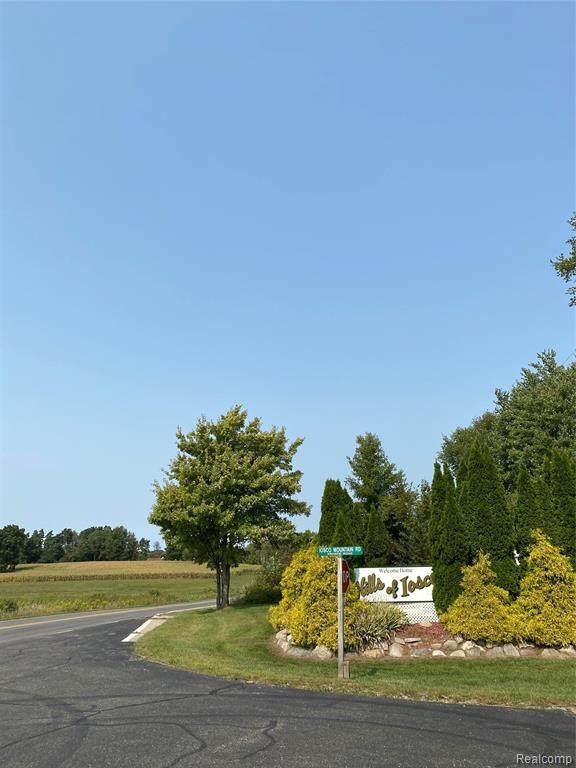 5676 Iosco Mountain Road, Iosco Twp, MI 48137 (#2200077729) :: Real Estate For A CAUSE