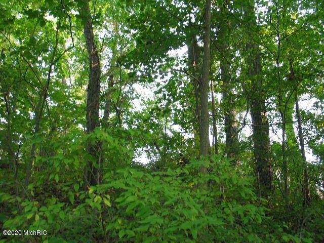 10620 Emerald Dr, Somerset Twp, MI 49233 (#53020039654) :: Duneske Real Estate Advisors