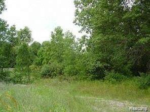 Vacant Milford Rd, Rose Twp, MI 48442 (MLS #2200081389) :: The Toth Team