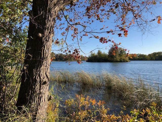 11191 Bemis Road, Bridgewater, MI 48158 (#543276916) :: BestMichiganHouses.com