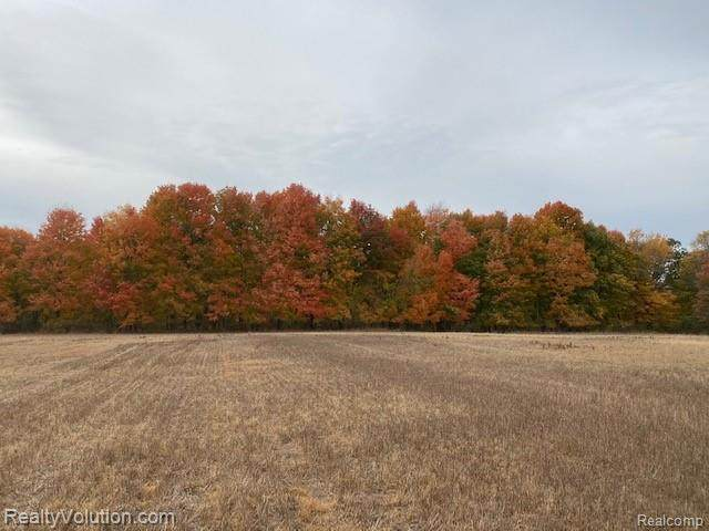 40 acres Summers Road - Photo 1