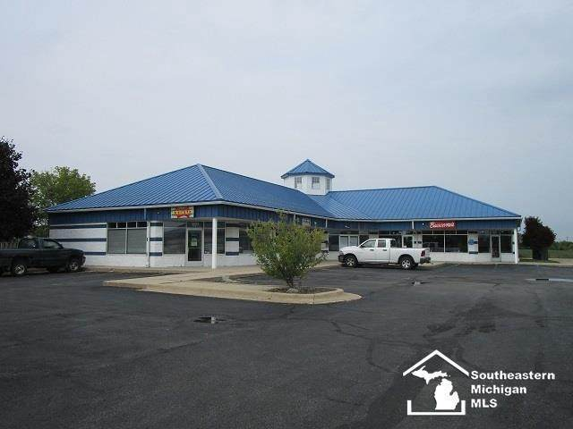 5071 N Dixie, Newport, MI 48162 (MLS #57050027479) :: The John Wentworth Group