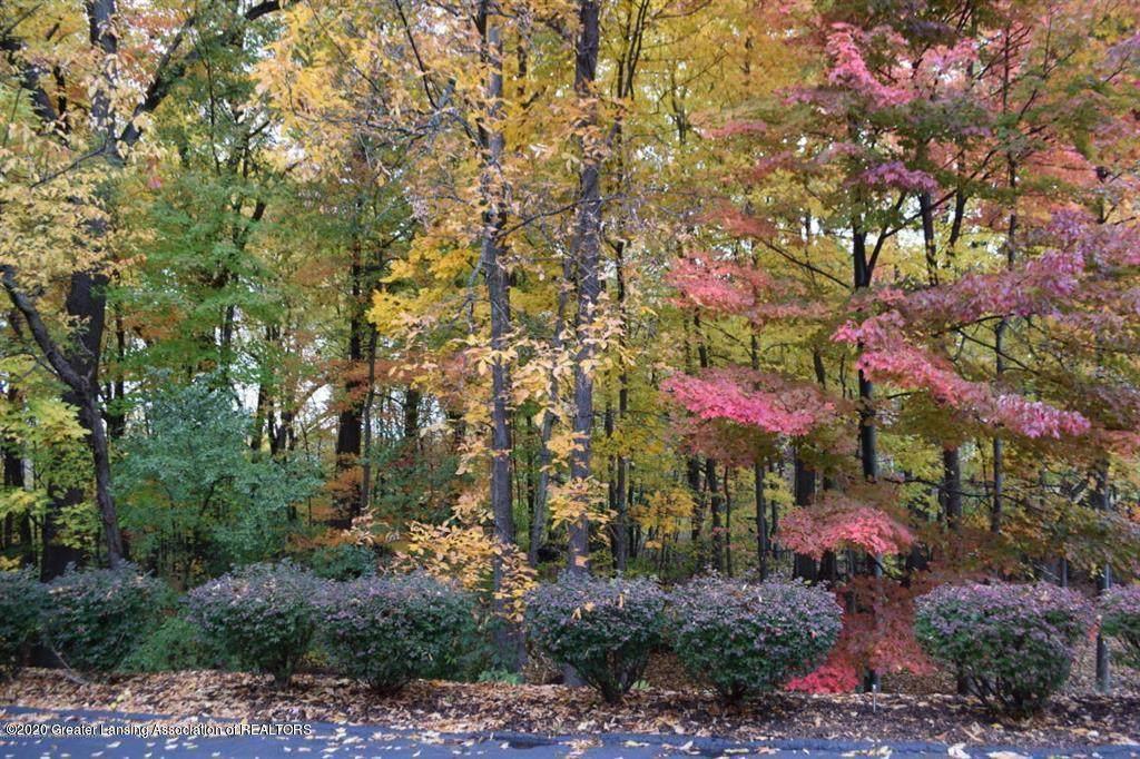 6445 Pine Hollow Drive - Photo 1