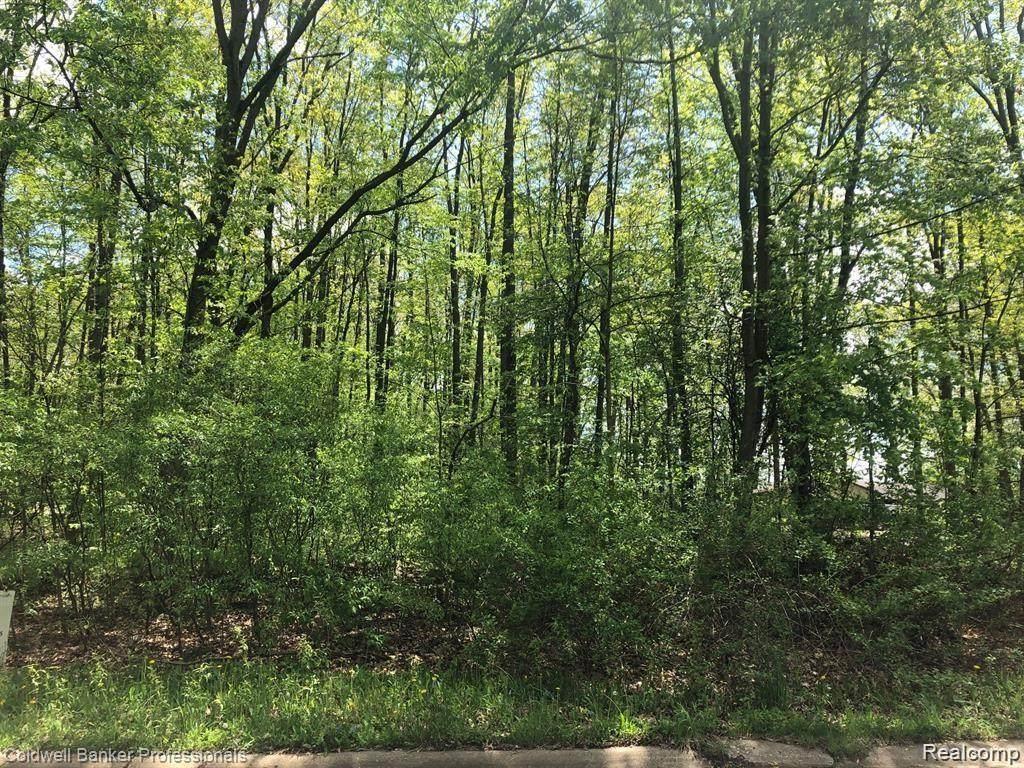 00 Pineview Lake Drive - Photo 1