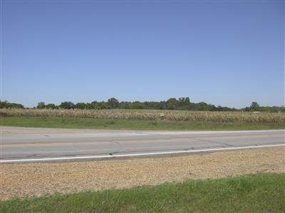 Us 131, Fabius Twp, MI 49093 (MLS #68020027463) :: The John Wentworth Group