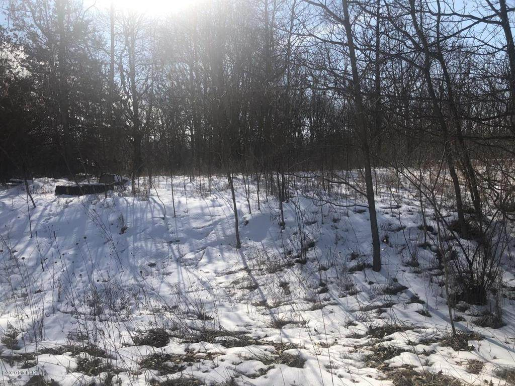Driftwood Drive - Photo 1