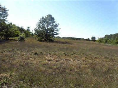 13 Trim Lake View Estates, Shelby Twp, MI 49446 (#67010007938) :: The Alex Nugent Team | Real Estate One
