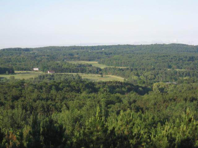 13 Acres Windy Ridge Road, Bear Lake Twp, MI 49675 (#67020021174) :: The Mulvihill Group