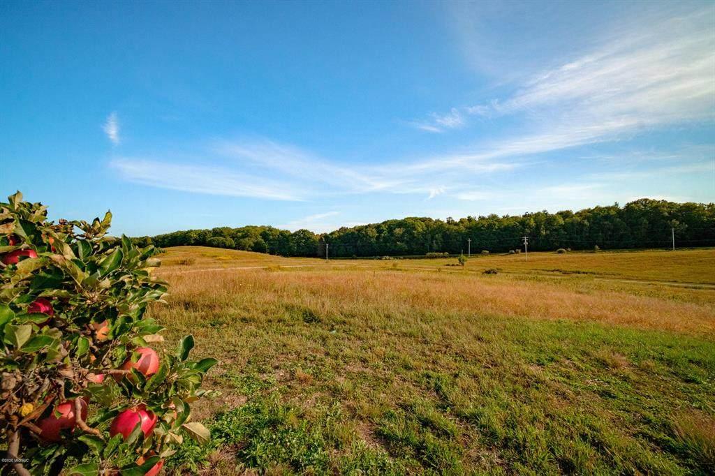 Vineyard View Road - Photo 1