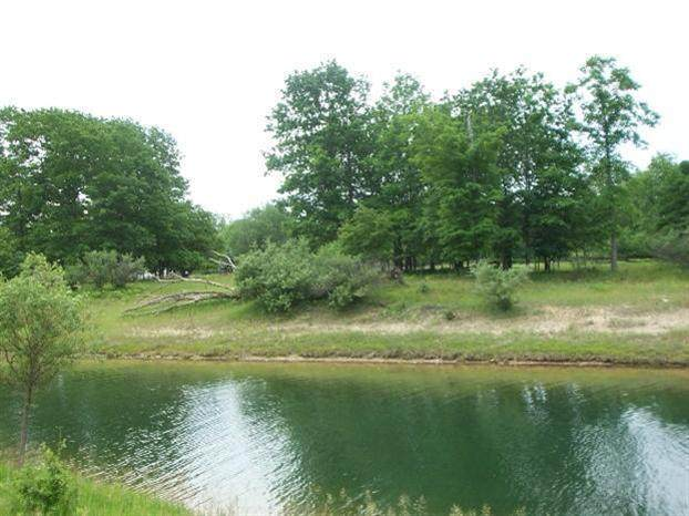 8778 Edgewater Drive - Photo 1