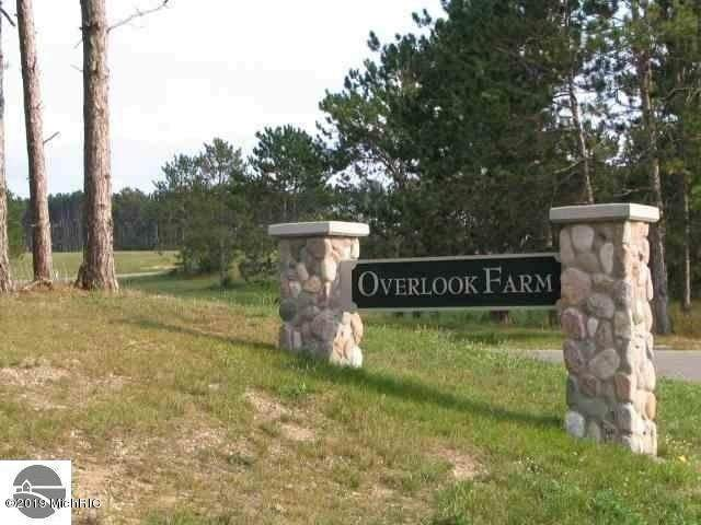 Lot 1 Overlook Drive, Cadillac, MI 49601 (#72019033450) :: Real Estate For A CAUSE