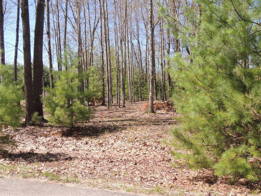 6362 Cedar Trace Drive - Photo 1