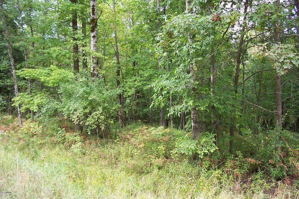0000 Centerline Road - Photo 1