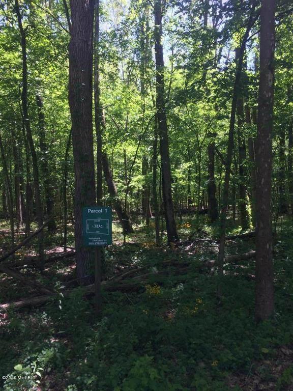 Misty Pines Lot 1 - Photo 1