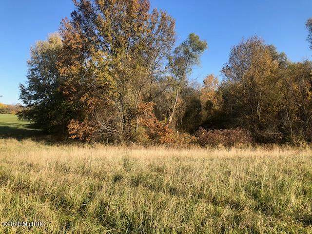 45520 Cr 358, Paw Paw Twp, MI 49045 (#69020045247) :: Robert E Smith Realty