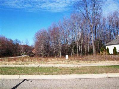 5490 Fairview Street, Stevensville Vlg, MI 49127 (#69016056221) :: Real Estate For A CAUSE