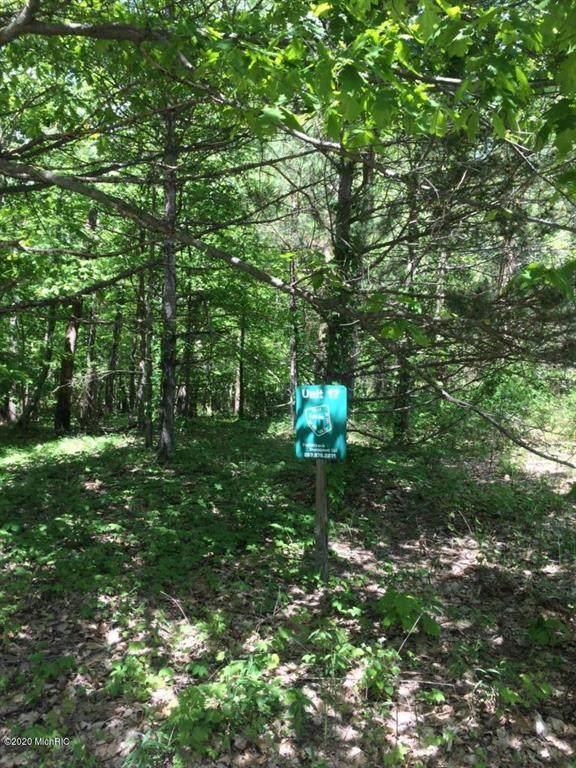 Misty Pines Lots 16,17,18&22 - Photo 1