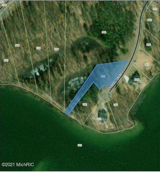 4935 S Ojibwe Point, Croton Twp, MI 49337 (#65019004308) :: GK Real Estate Team